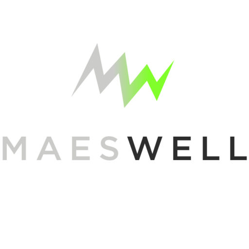 Web de MaesWell
